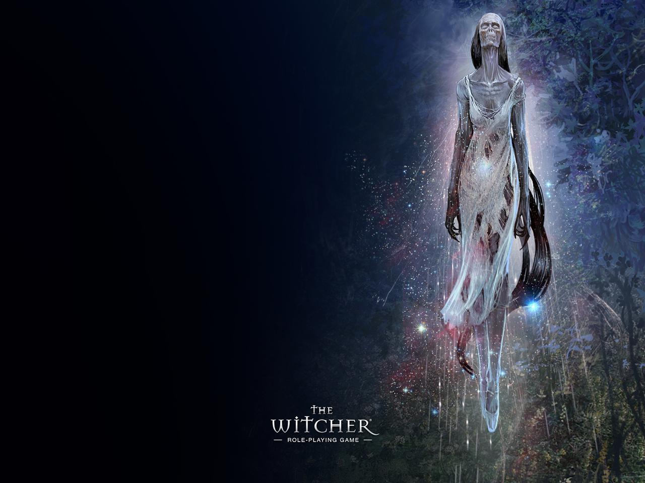 Арт к игре The Witcher
