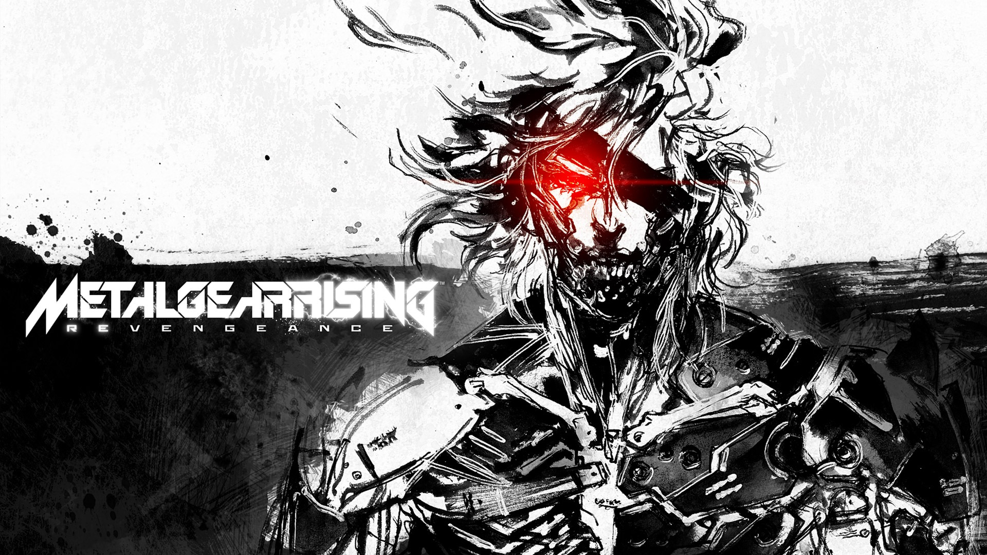 Арт к игре Metal Gear Rising: Revengeance