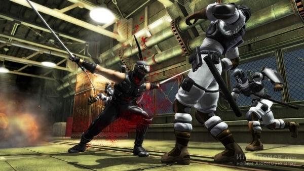 Скриншот к игре Ninja Gaiden Sigma