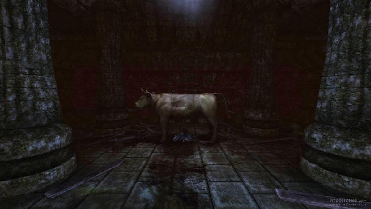 Скриншот к игре Amnesia: The Dark Descent
