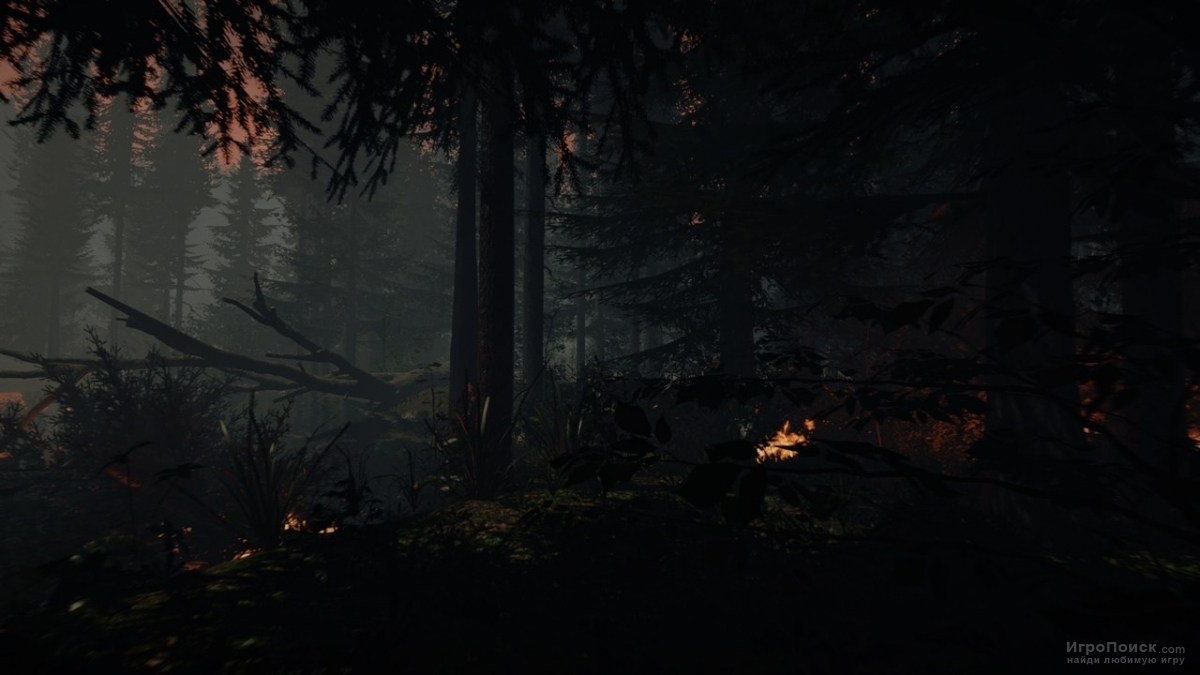 Скриншот к игре The Forest