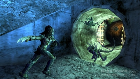 Скриншот к игре Aliens vs. Predator: Requiem