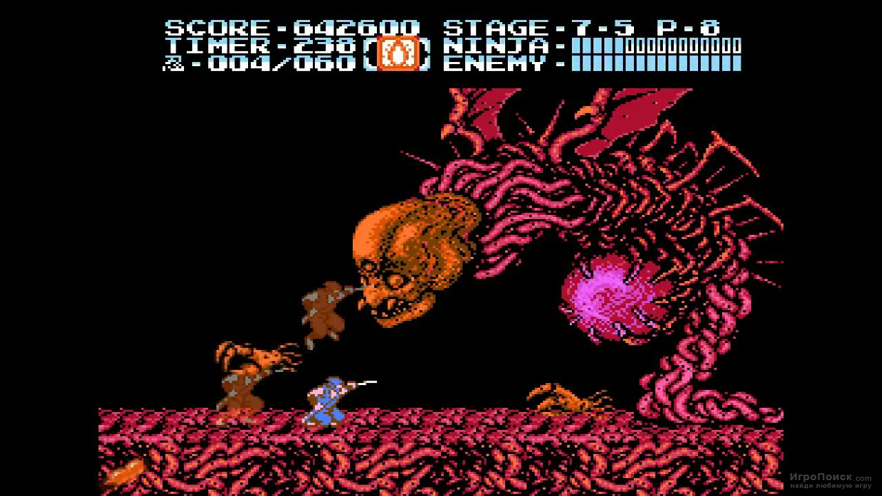 Скриншот к игре Ninja Gaiden II: The Dark Sword of Chaos