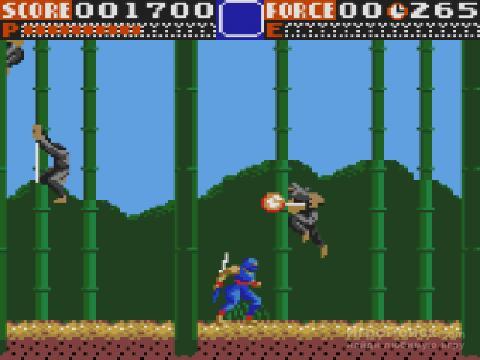 Скриншот к игре Ninja Gaiden 1991