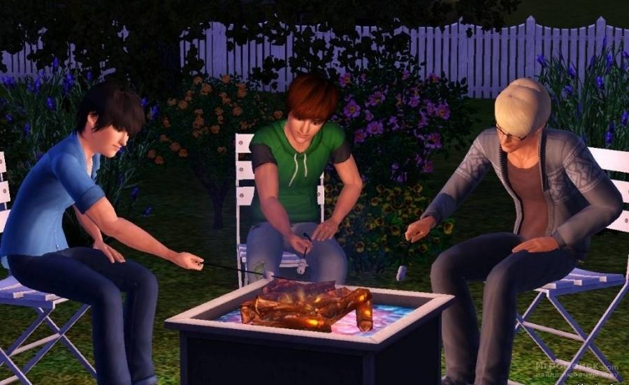 Скриншот к игре The Sims 3