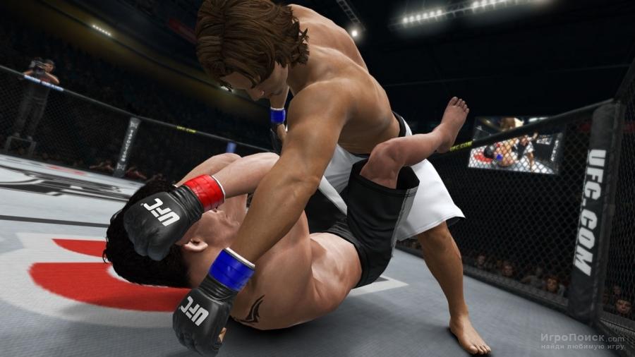 Драка девушек в ринге и ритме порно